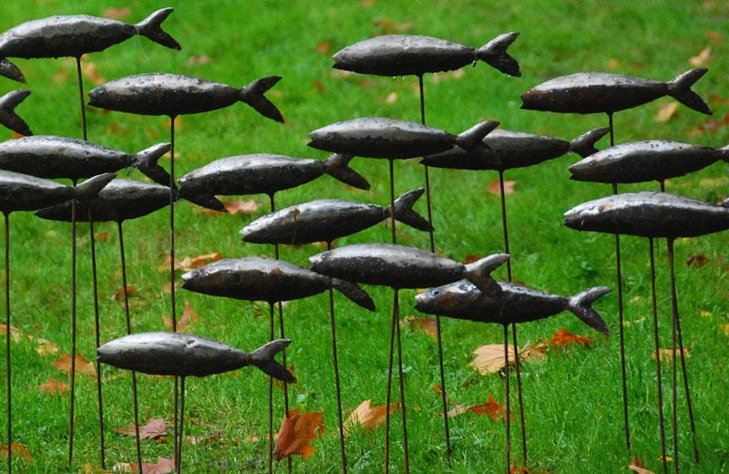 141015schoppenwihr-poissons