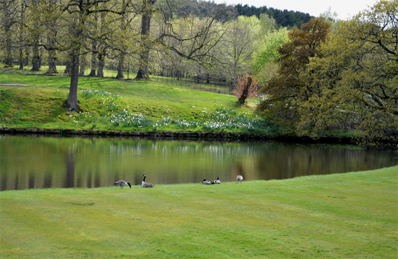 Lyme-Park-Cheshire